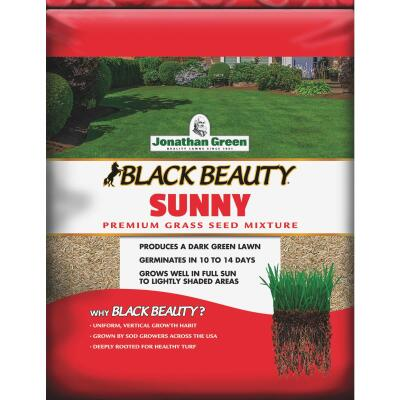Jonathan Green Black Beauty 3 Lb. 1275 Sq. Ft. Coverage Full Sun Grass Seed