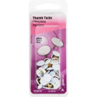 Hillman Anchor Wire White 23/64 In. x 15/64 In. Thumb Tack (40 Ct.) Image 2