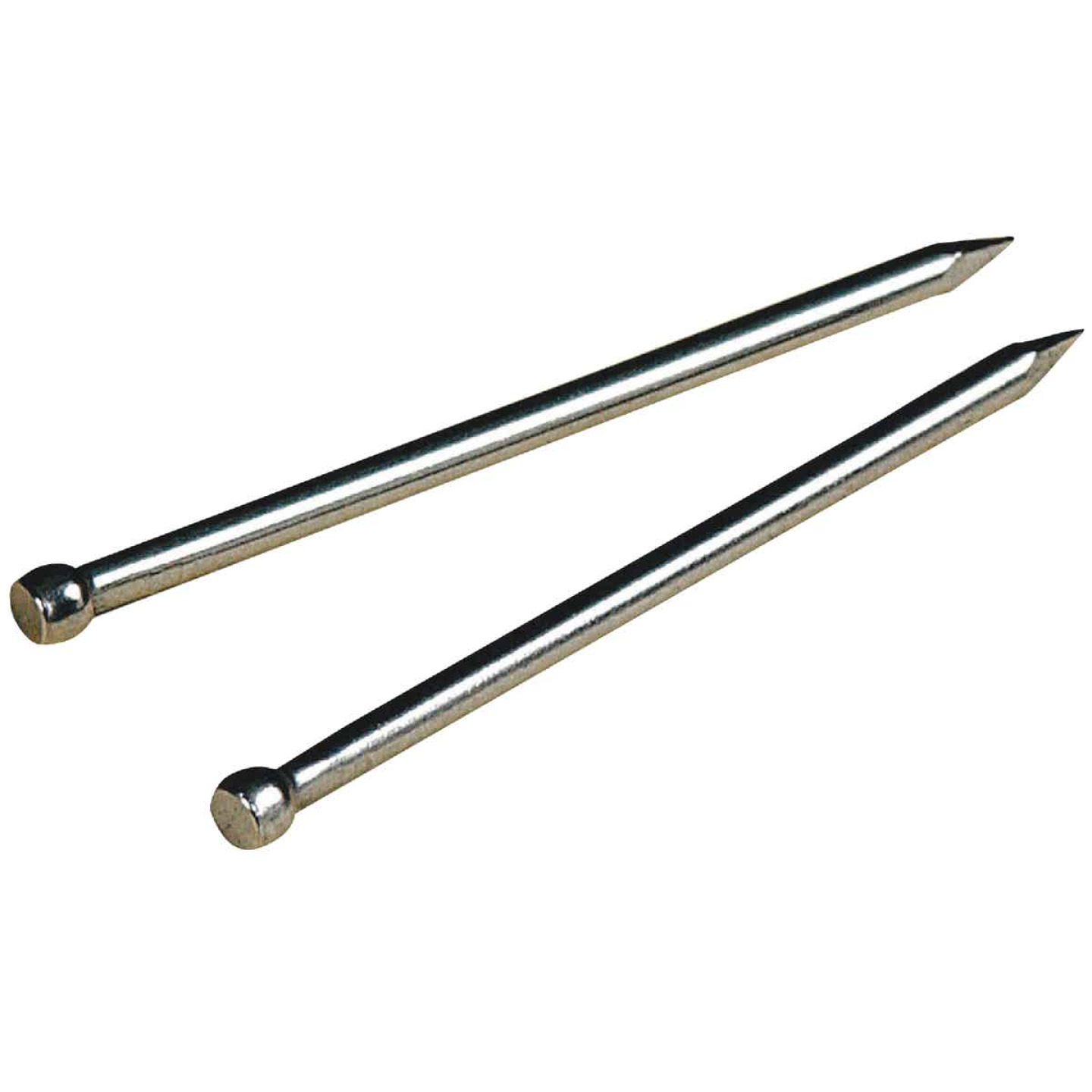 Hillman Anchor Wire 3/4 In. 17 ga 2 Oz. Stainless Steel Brad Image 1